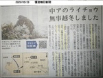 木曽駒雷鳥無事20200523.JPG